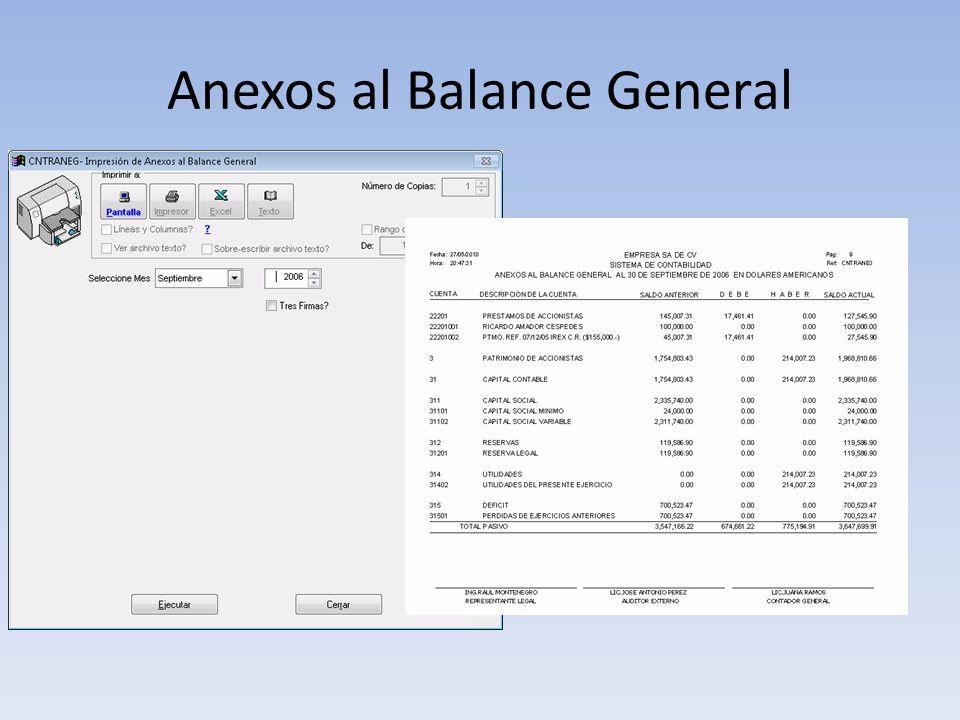 Anexos al Balance General