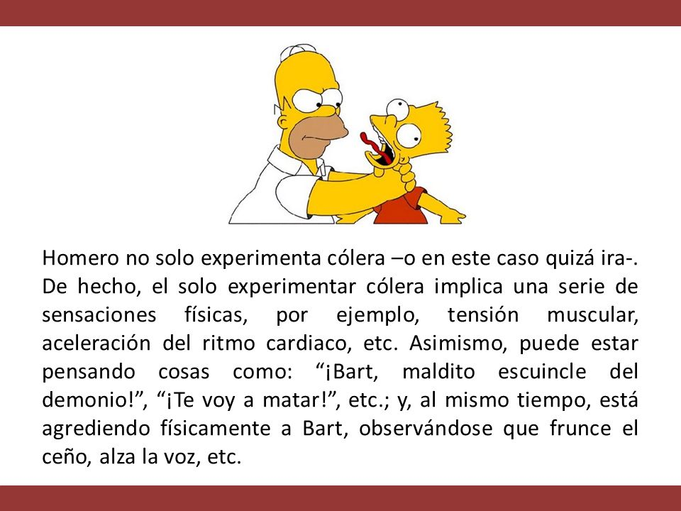 Homero no solo experimenta cólera –o en este caso quizá ira-