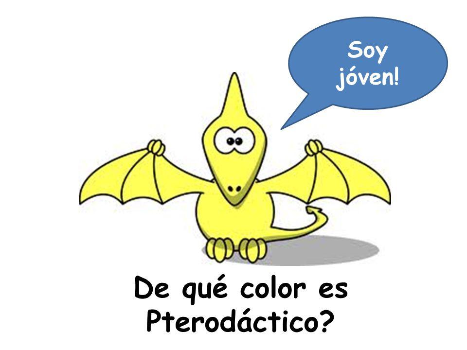 De qué color es Pterodáctico