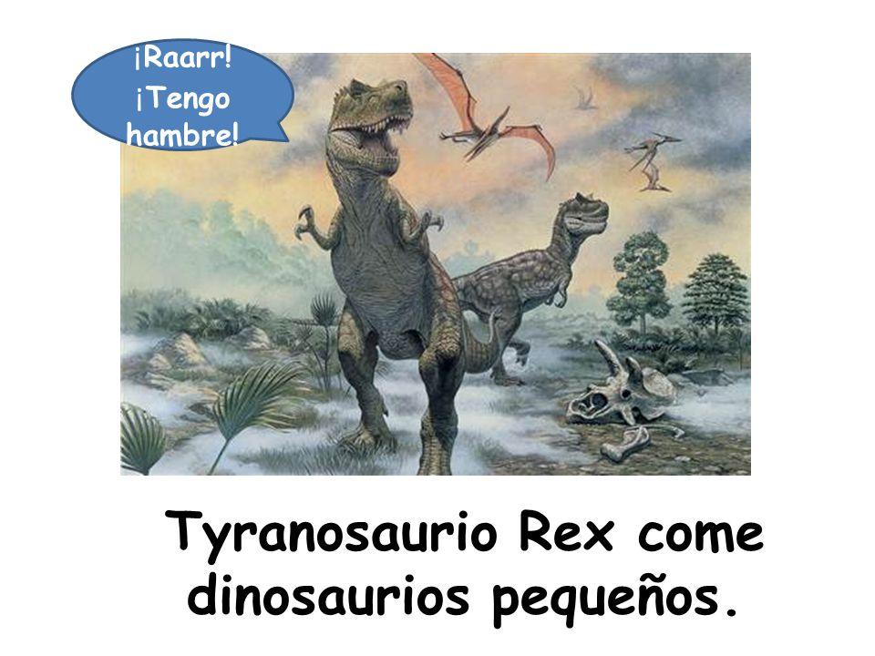 Tyranosaurio Rex come dinosaurios pequeños.