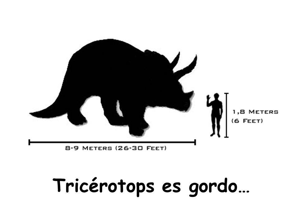 Tricérotops es gordo…