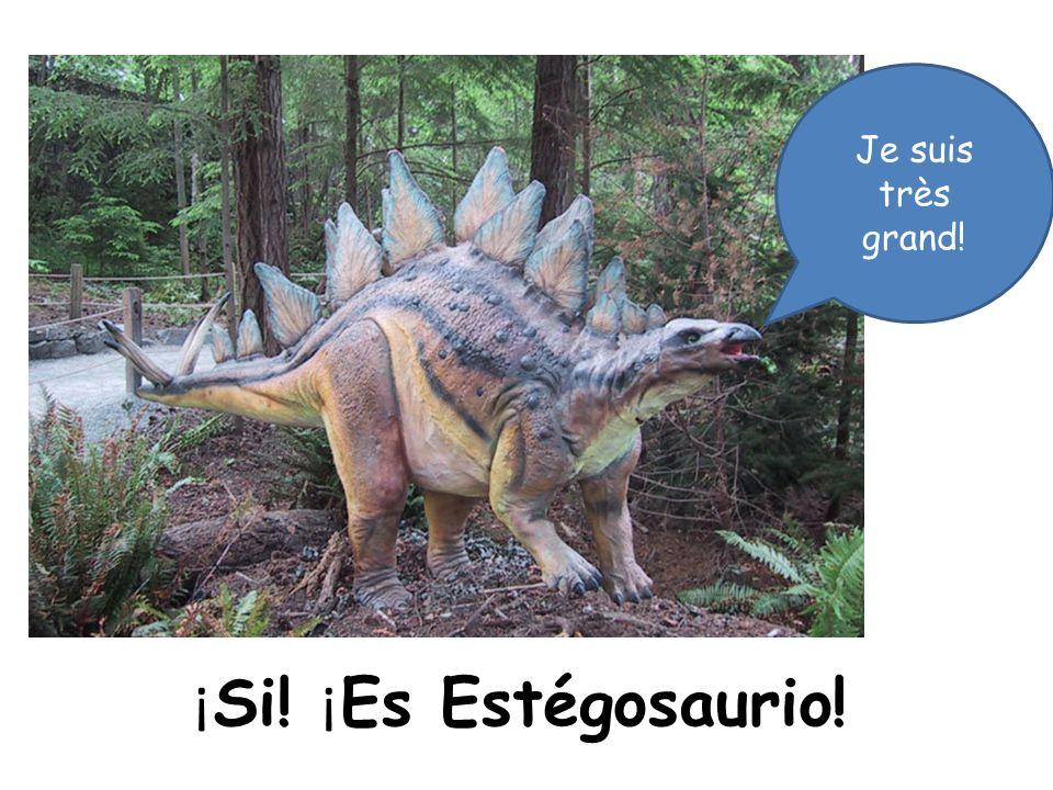 Je suis très grand! ¡Si! ¡Es Estégosaurio!