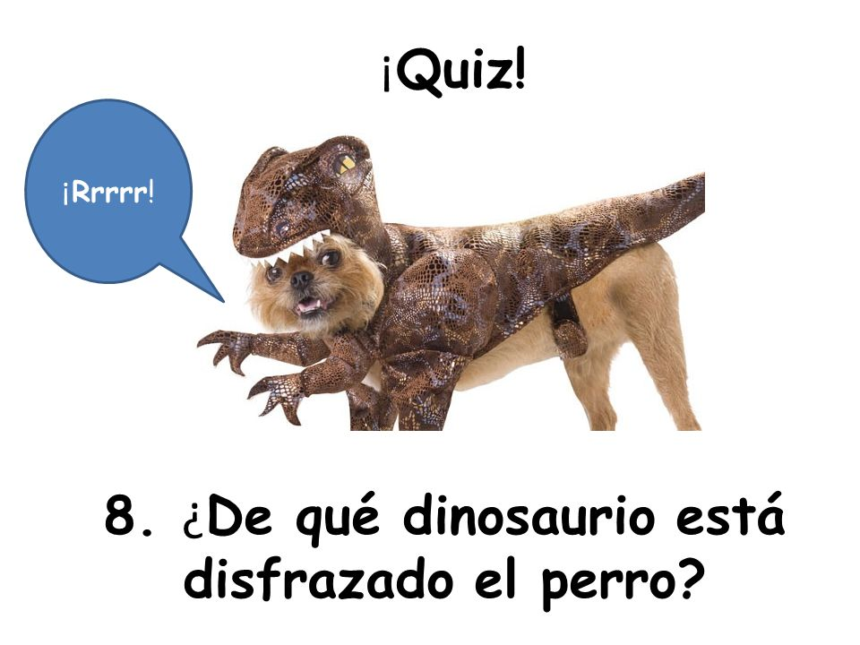 8. ¿De qué dinosaurio está disfrazado el perro