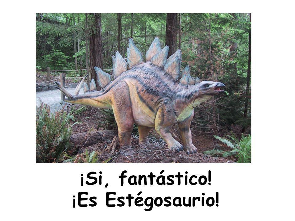 ¡Si, fantástico! ¡Es Estégosaurio!