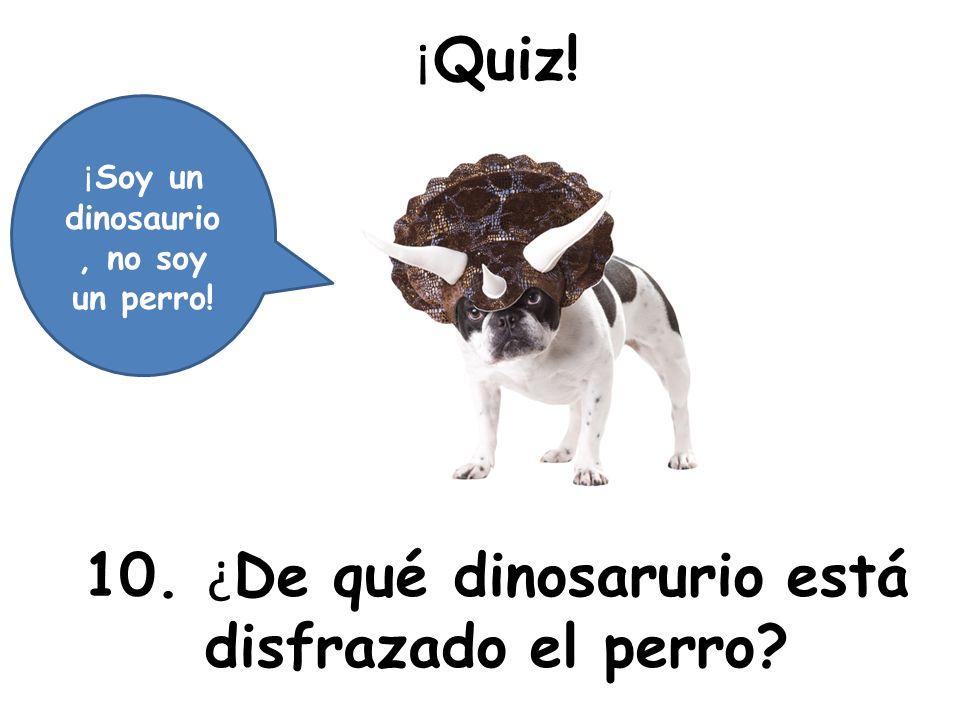10. ¿De qué dinosarurio está disfrazado el perro