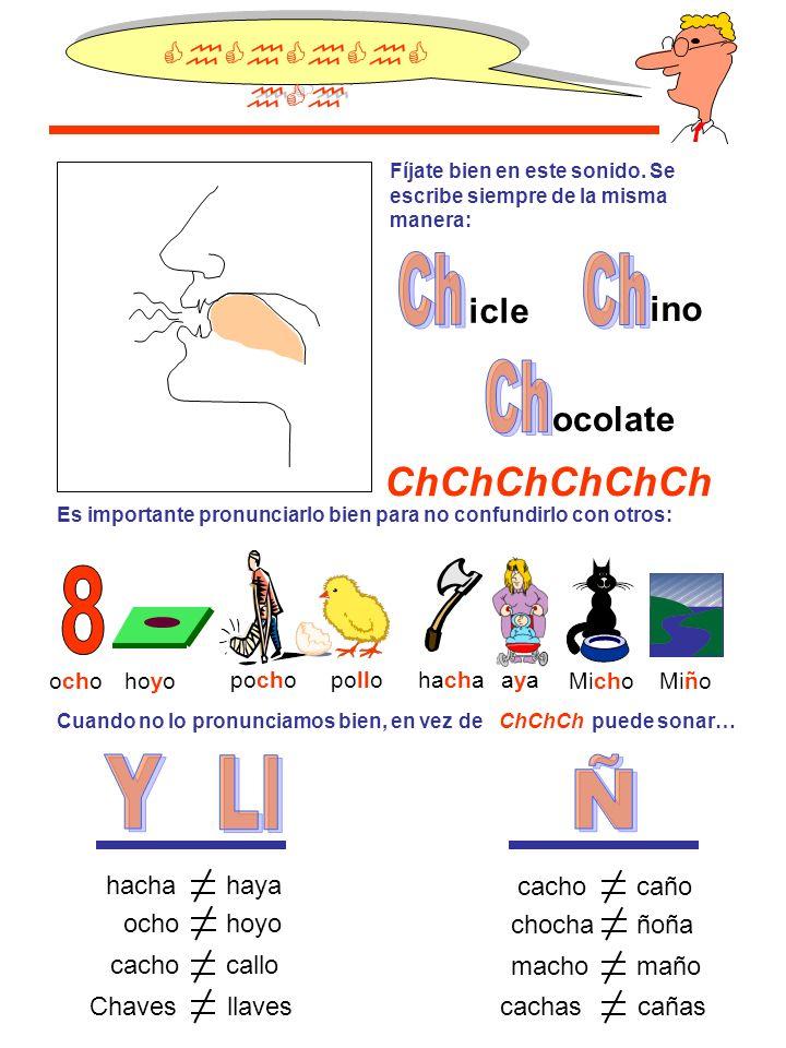 Ch Ch Ch 8 Y Ll Ñ ChChChChChCh ChChChChChCh icle ino ocolate hacha