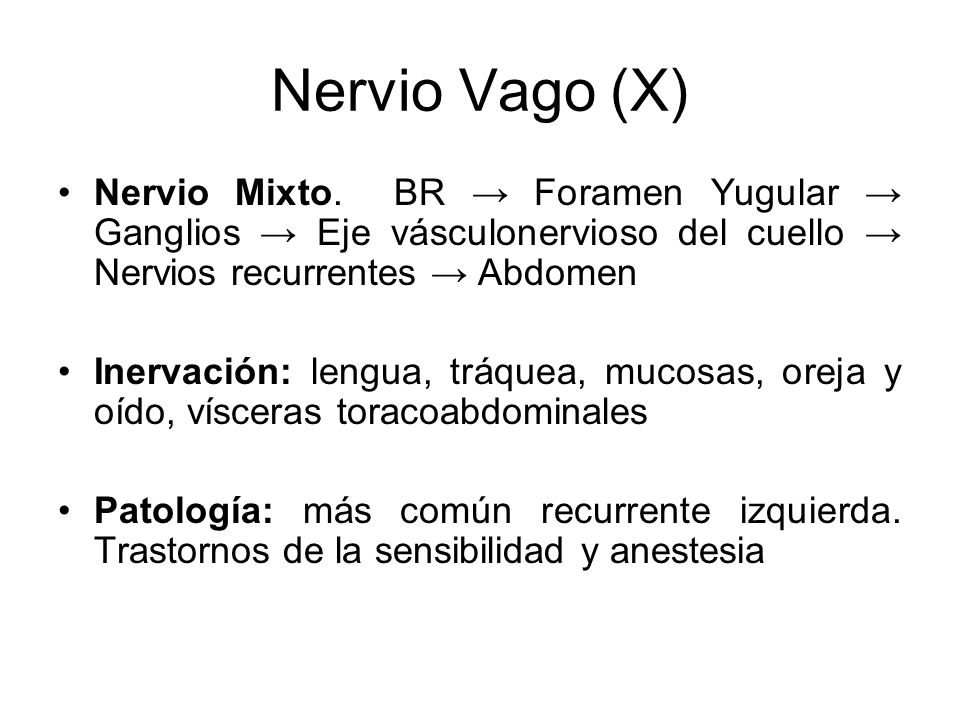 Nervio Vago (X) Nervio Mixto. BR → Foramen Yugular → Ganglios → Eje vásculonervioso del cuello → Nervios recurrentes → Abdomen.