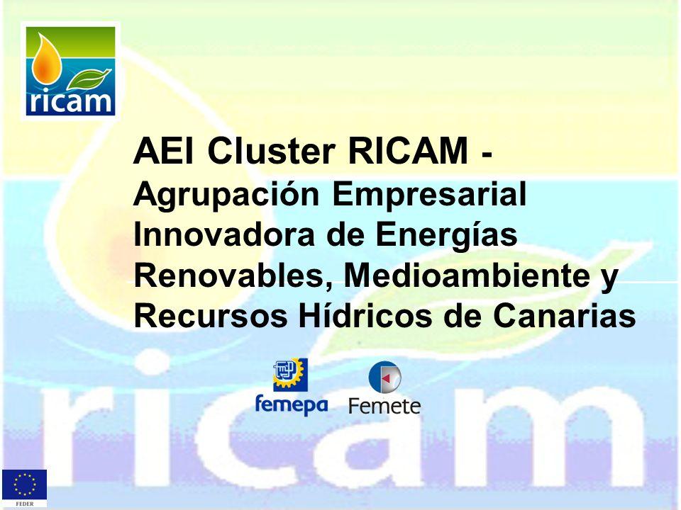 AEI Cluster RICAM - Agrupación Empresarial Innovadora de Energías Renovables, Medioambiente y Recursos Hídricos de Canarias