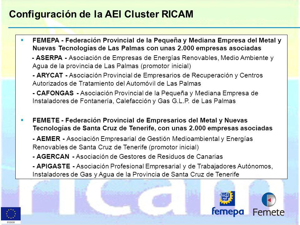 Configuración de la AEI Cluster RICAM
