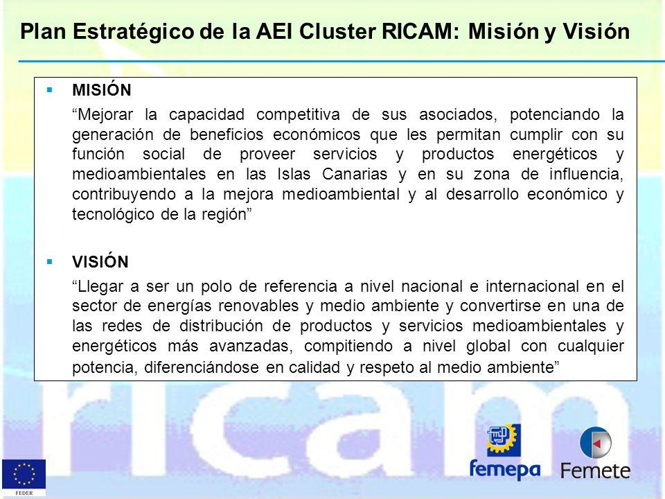 Plan Estratégico de la AEI Cluster RICAM: Misión y Visión