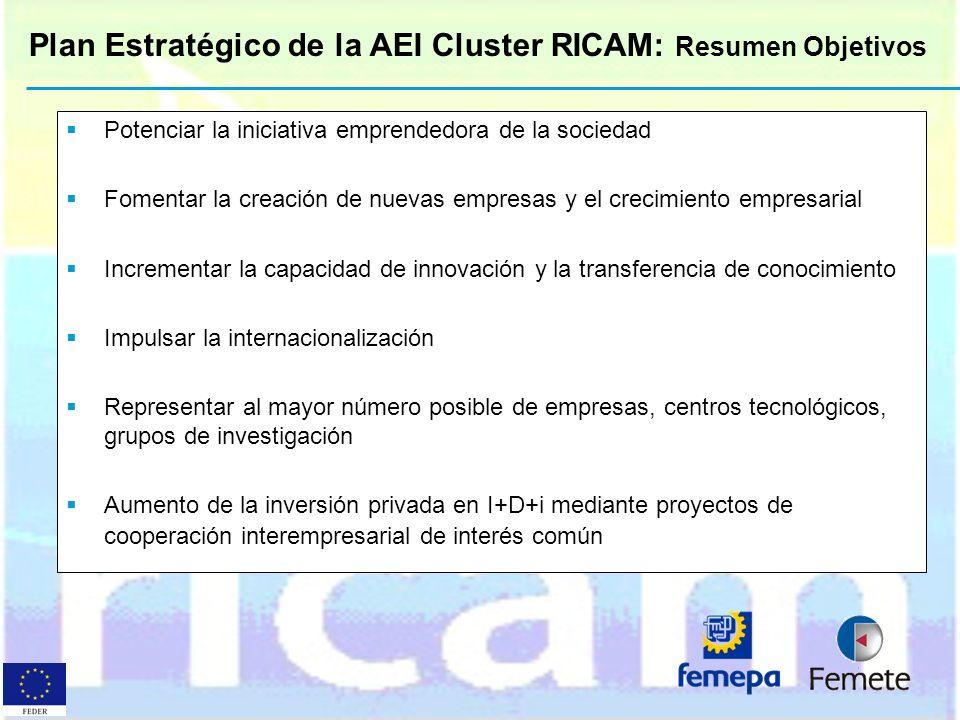 Plan Estratégico de la AEI Cluster RICAM: Resumen Objetivos