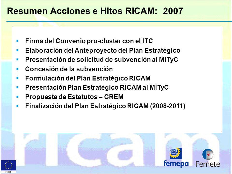 Resumen Acciones e Hitos RICAM: 2007
