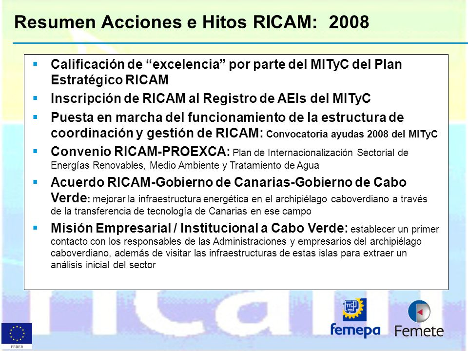 Resumen Acciones e Hitos RICAM: 2008