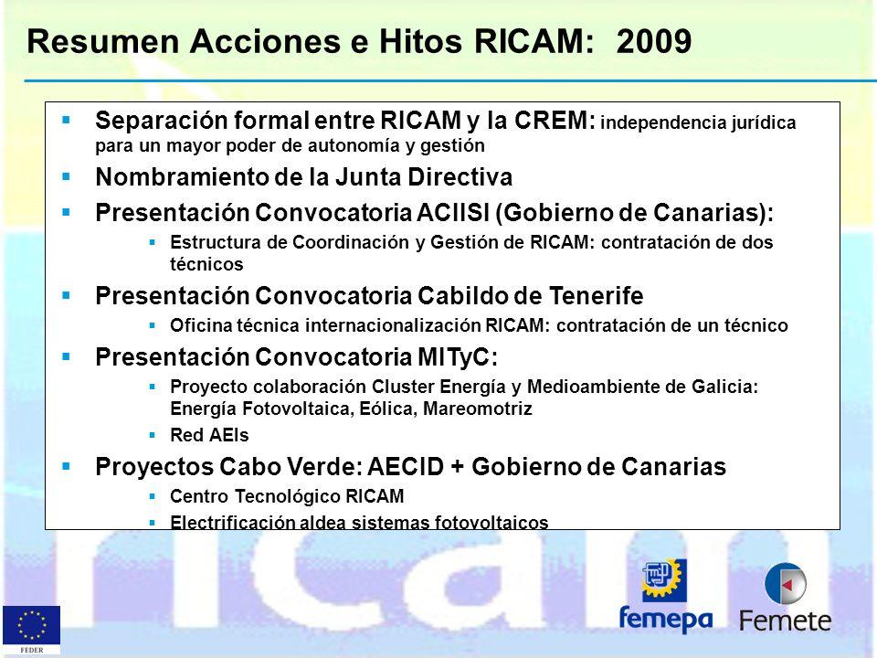 Resumen Acciones e Hitos RICAM: 2009