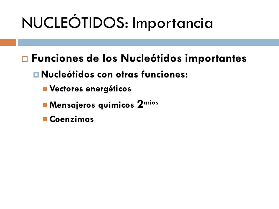 NUCLEÓTIDOS: Importancia