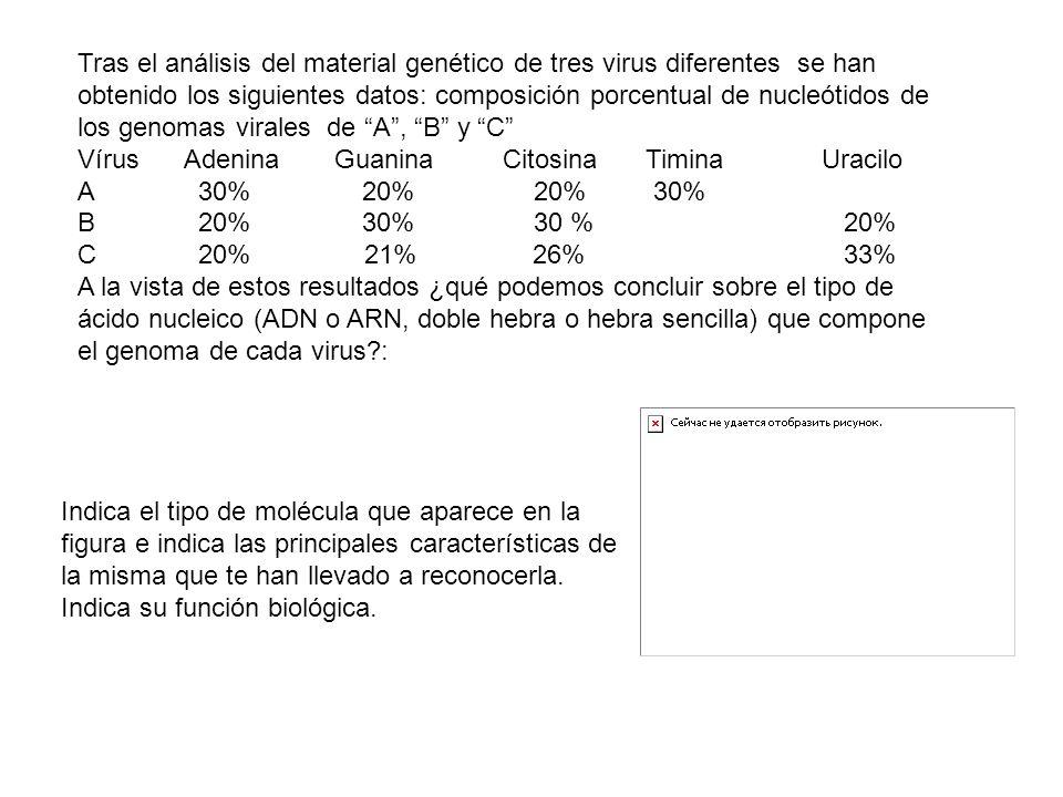 Tras el análisis del material genético de tres virus diferentes se han obtenido los siguientes datos: composición porcentual de nucleótidos de los genomas virales de A , B y C