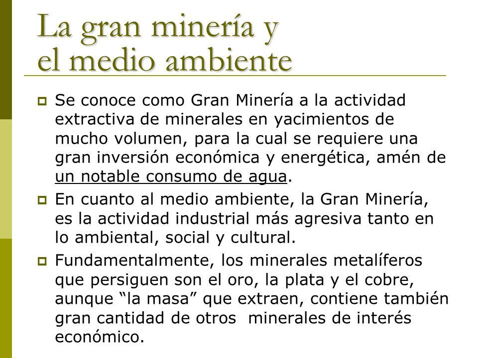 La gran minería y el medio ambiente
