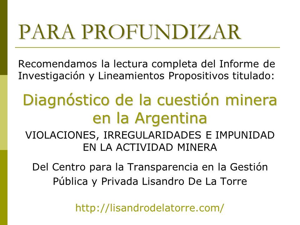 PARA PROFUNDIZAR Diagnóstico de la cuestión minera en la Argentina