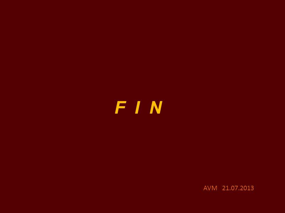 F I N AVM 21.07.2013