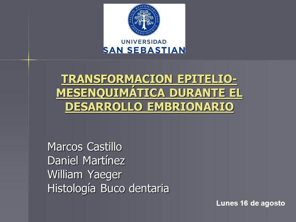 Histología Buco dentaria