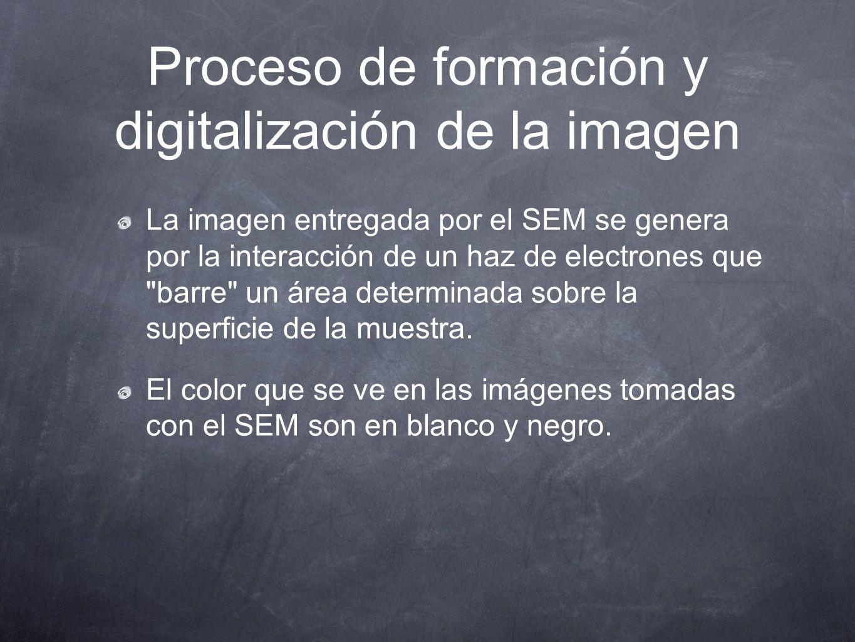 Proceso de formación y digitalización de la imagen