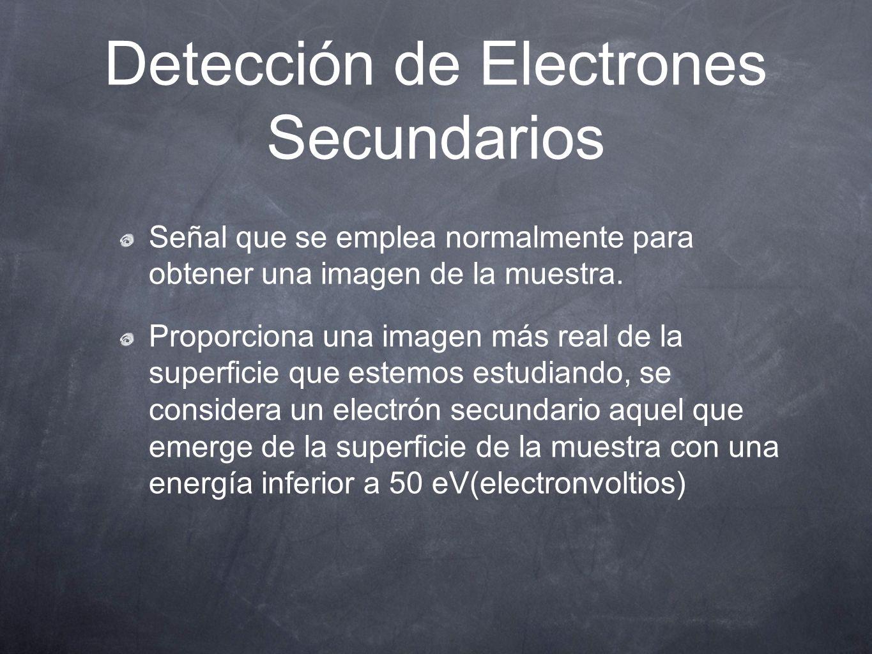 Detección de Electrones Secundarios