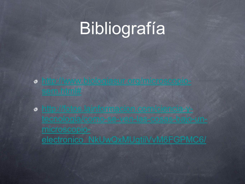 Bibliografía http://www.biologiasur.org/microscopio- sem.html#