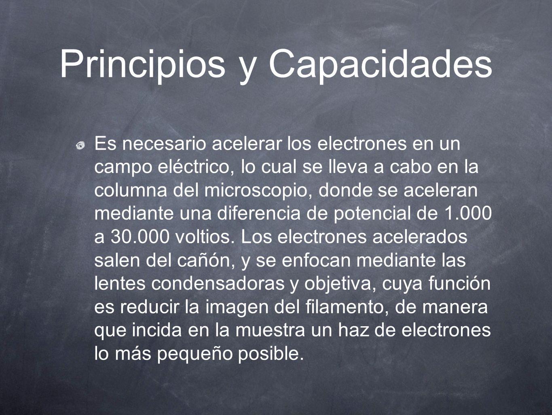 Principios y Capacidades