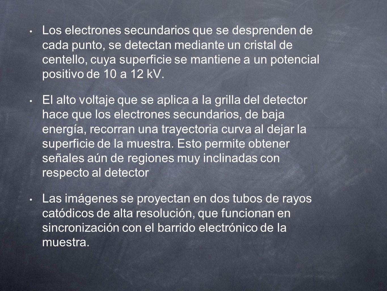 Los electrones secundarios que se desprenden de cada punto, se detectan mediante un cristal de centello, cuya superficie se mantiene a un potencial positivo de 10 a 12 kV.