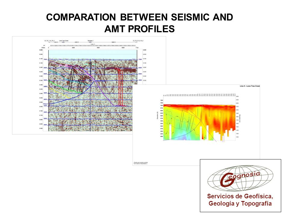 COMPARATION BETWEEN SEISMIC AND AMT PROFILES