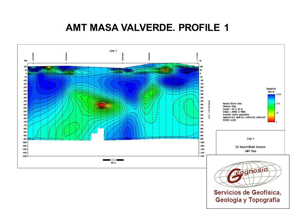 AMT MASA VALVERDE. PROFILE 1