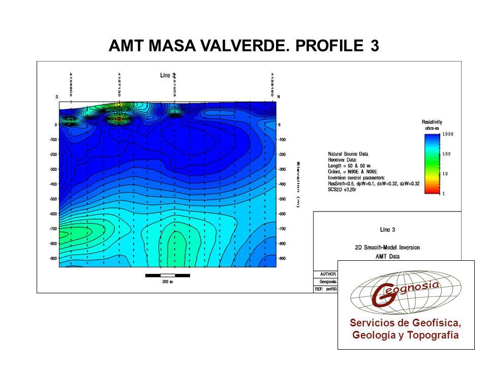 AMT MASA VALVERDE. PROFILE 3