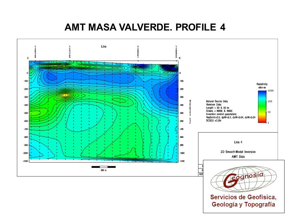 AMT MASA VALVERDE. PROFILE 4