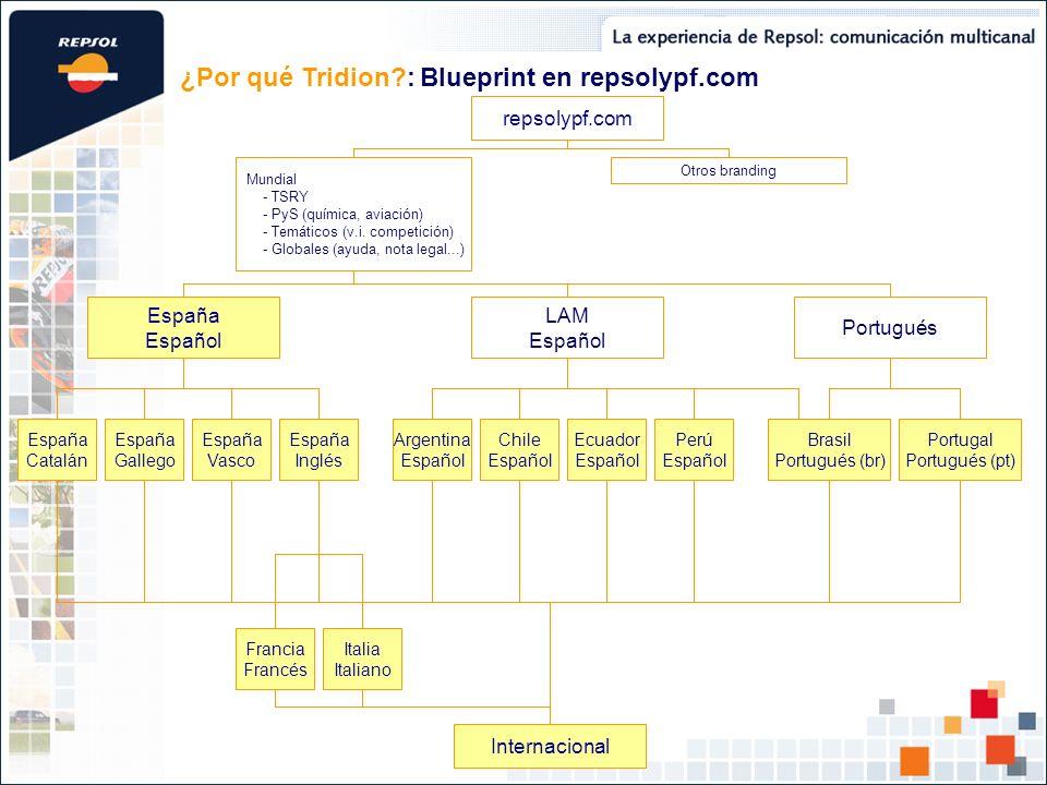 ¿Por qué Tridion : Blueprint en repsolypf.com