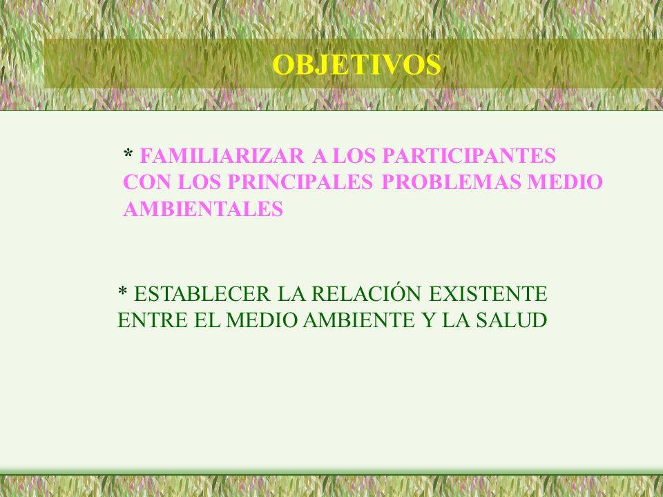 OBJETIVOS * FAMILIARIZAR A LOS PARTICIPANTES CON LOS PRINCIPALES PROBLEMAS MEDIO AMBIENTALES.
