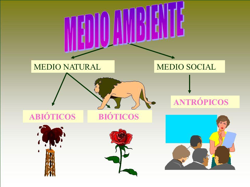 MEDIO AMBIENTE MEDIO NATURAL MEDIO SOCIAL ANTRÓPICOS ABIÓTICOS