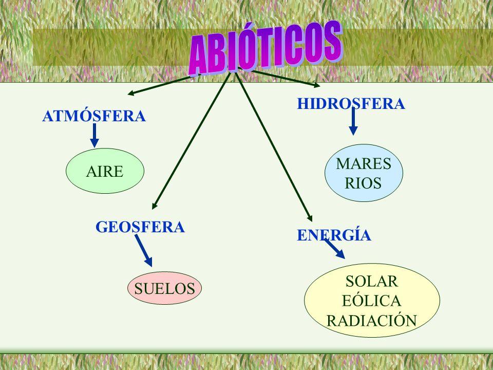 ABIÓTICOS HIDROSFERA ATMÓSFERA MARES AIRE RIOS GEOSFERA ENERGÍA SOLAR