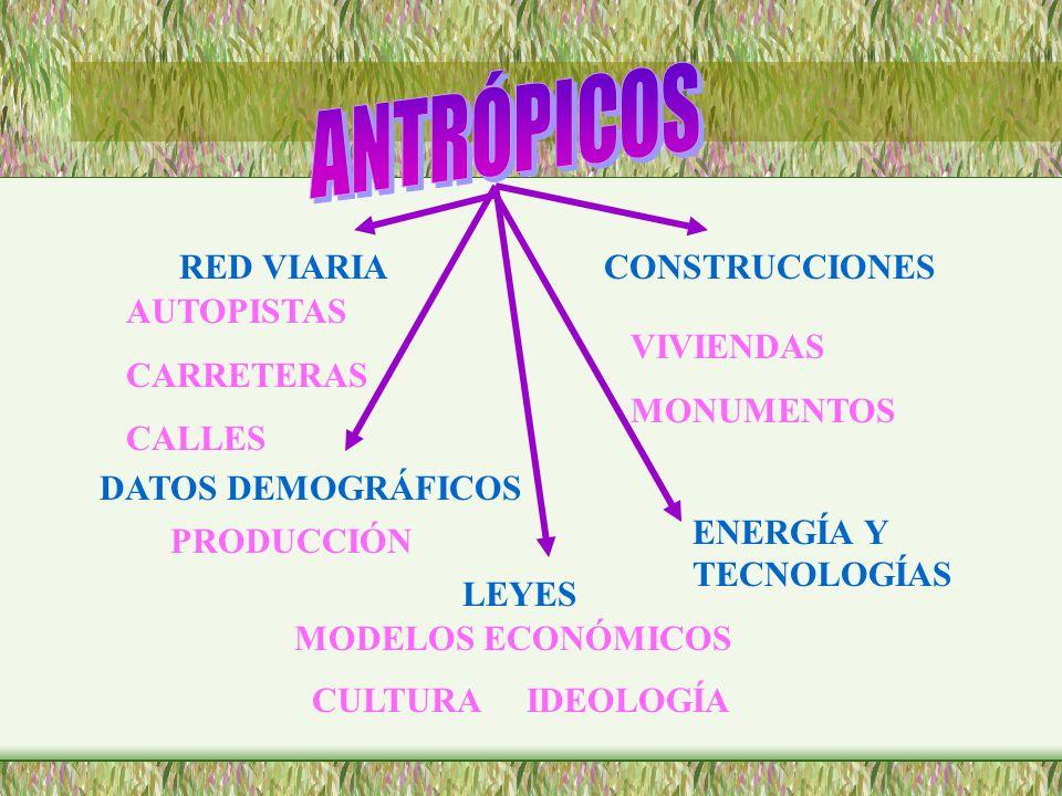 ANTRÓPICOS RED VIARIA CONSTRUCCIONES AUTOPISTAS CARRETERAS CALLES