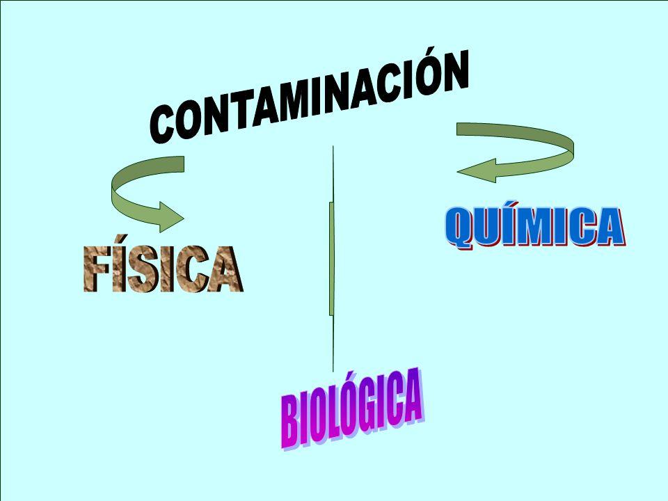 CONTAMINACIÓN QUÍMICA FÍSICA BIOLÓGICA