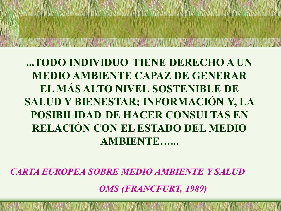 ...TODO INDIVIDUO TIENE DERECHO A UN MEDIO AMBIENTE CAPAZ DE GENERAR EL MÁS ALTO NIVEL SOSTENIBLE DE SALUD Y BIENESTAR; INFORMACIÓN Y, LA POSIBILIDAD DE HACER CONSULTAS EN RELACIÓN CON EL ESTADO DEL MEDIO AMBIENTE…...