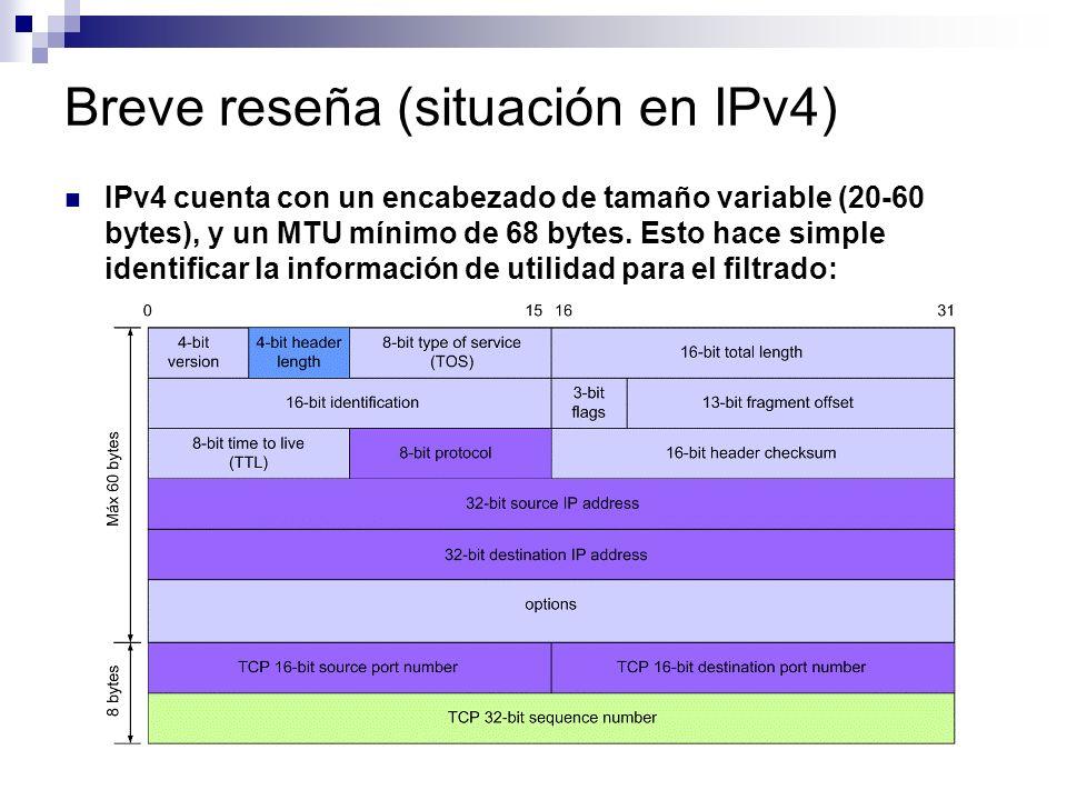 Breve reseña (situación en IPv4)