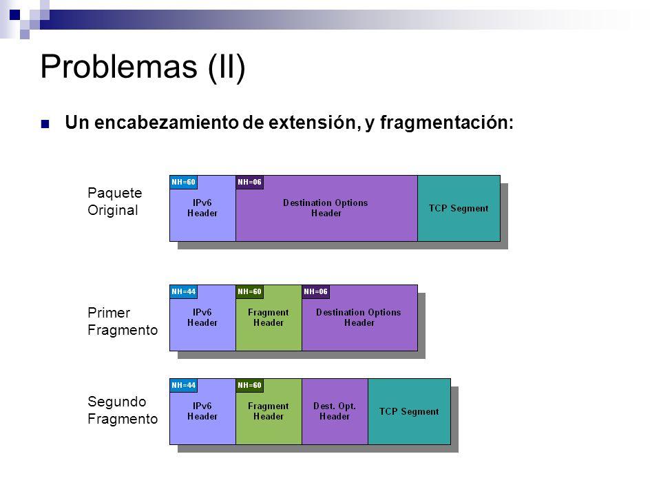 Problemas (II) Un encabezamiento de extensión, y fragmentación: