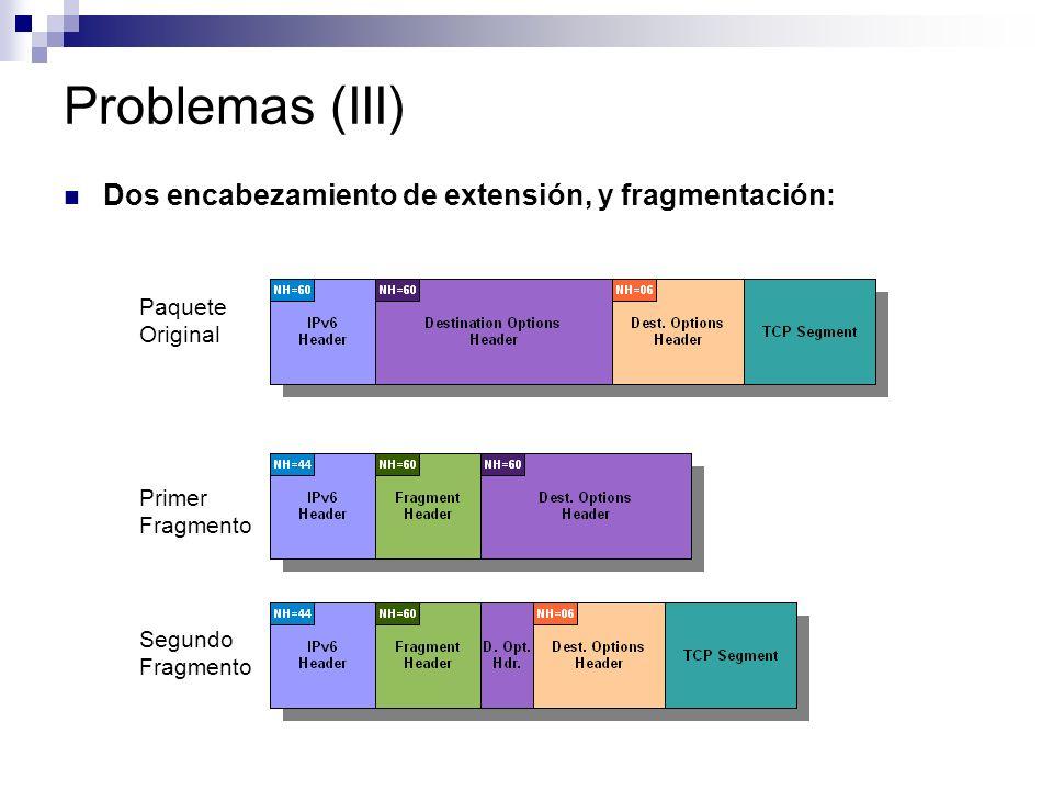 Problemas (III) Dos encabezamiento de extensión, y fragmentación: