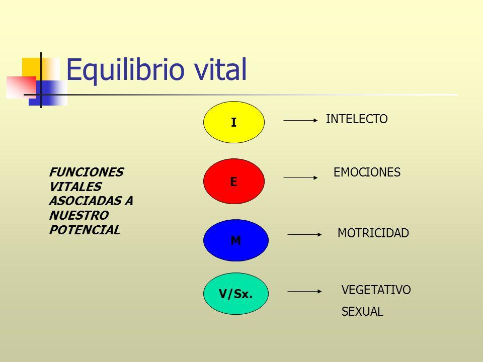 Equilibrio vital I INTELECTO E