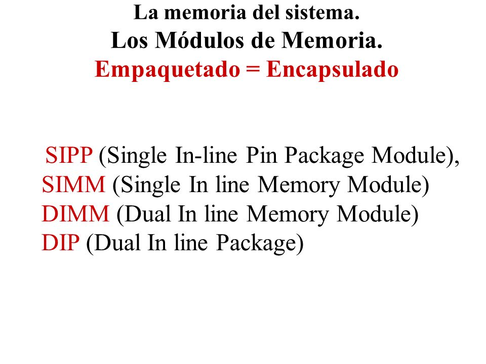 SIPP (Single In-line Pin Package Module),
