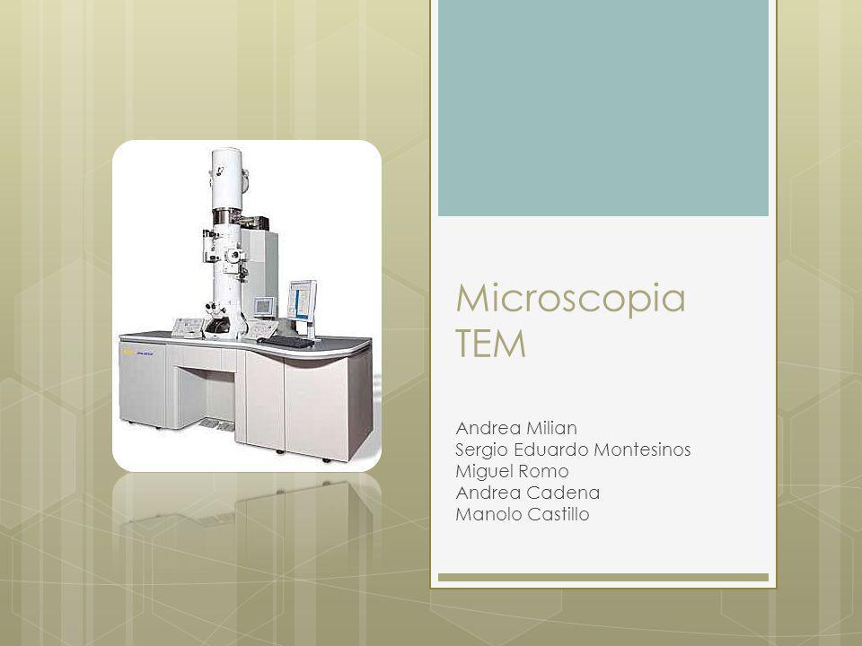 Microscopia TEM Andrea Milian Sergio Eduardo Montesinos Miguel Romo