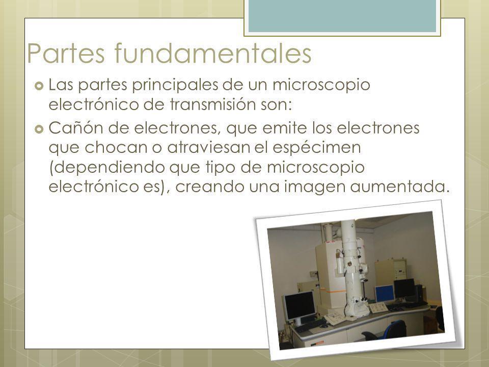Partes fundamentales Las partes principales de un microscopio electrónico de transmisión son: