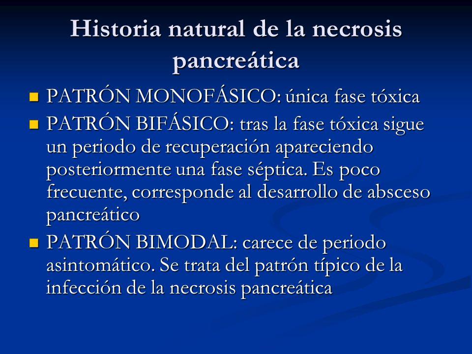 Historia natural de la necrosis pancreática