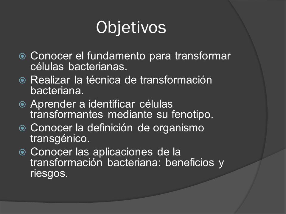 Objetivos Conocer el fundamento para transformar células bacterianas.