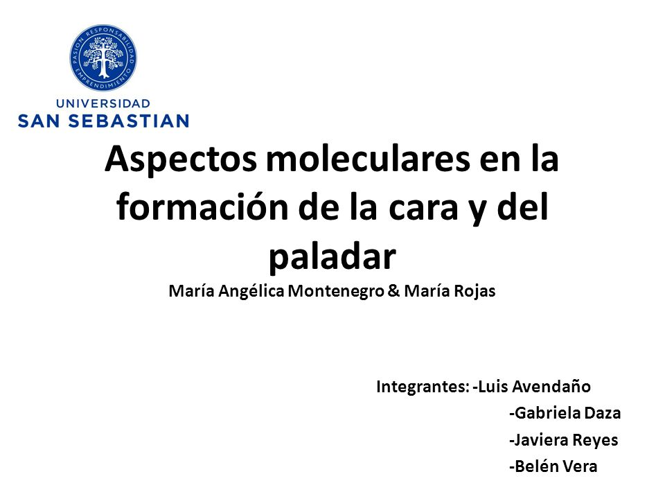 Integrantes: -Luis Avendaño -Gabriela Daza -Javiera Reyes -Belén Vera